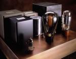Steve 50 amplifier